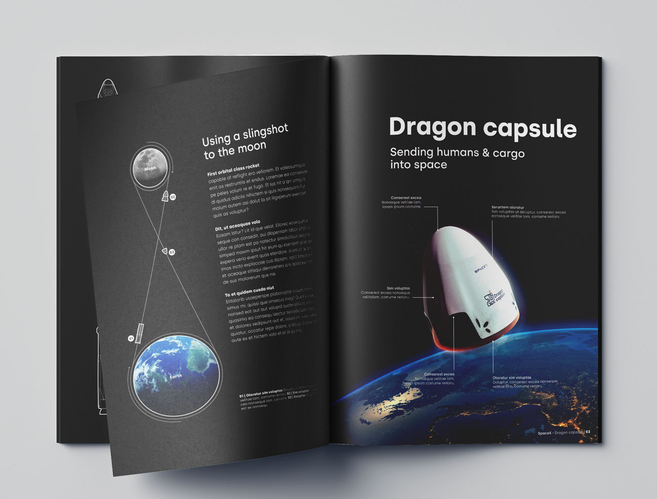 Dragon Brochure - Dragon Rebrand